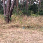 Antoniowka_plac zabaw (9)