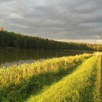 gmina_otoczenie zalewu (15)